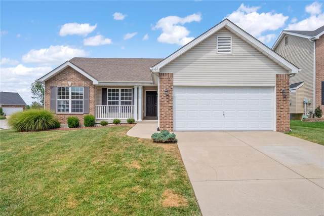 733 Terra Springs Way Drive, Fairview Heights, IL 62208 (#21060386) :: Clarity Street Realty