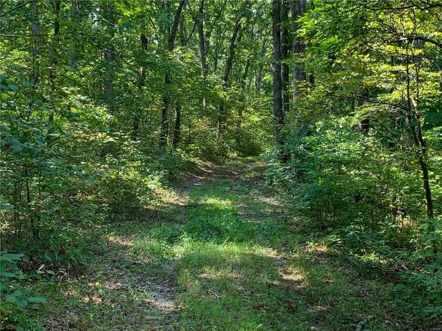 0 Pinnacle Lake Estates Trails, New Florence, MO 63363 (#21061459) :: Mid Rivers Homes