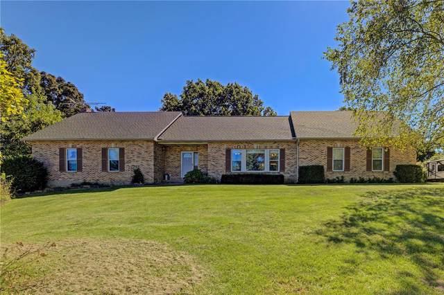 5560 Golden Ridge Drive, Hillsboro, MO 63050 (#21061981) :: Parson Realty Group