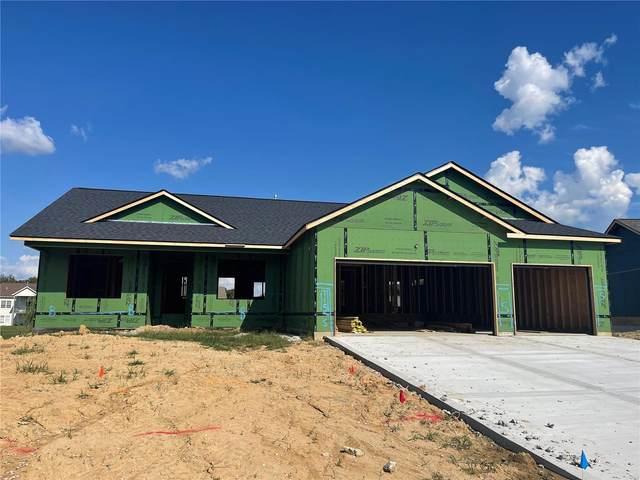 115 Timber Terrace N, Troy, IL 62294 (#21066757) :: Hartmann Realtors Inc.