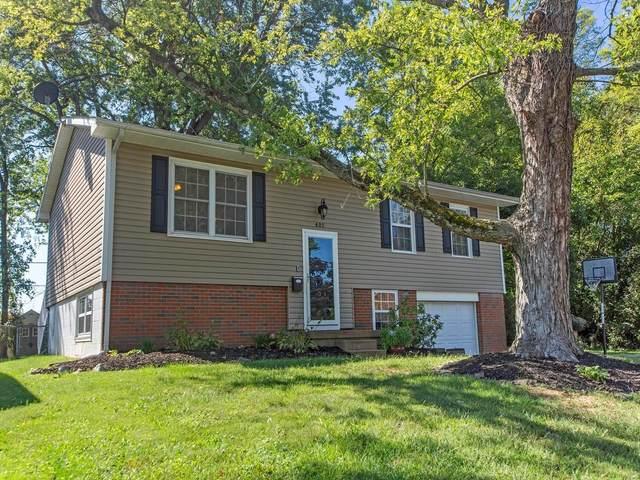 401 Dartmouth Drive, O'Fallon, IL 62269 (#21067487) :: Matt Smith Real Estate Group