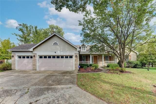 1103 Summerlake Estates Drive, Fenton, MO 63026 (#21070817) :: Matt Smith Real Estate Group