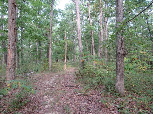 22317 Wild Horse Lake Road, Warrenton, MO 63383 (#21071261) :: Parson Realty Group