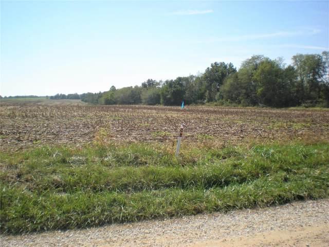 58 Pike 319, Bowling Green, MO 63334 (#21072723) :: Matt Smith Real Estate Group