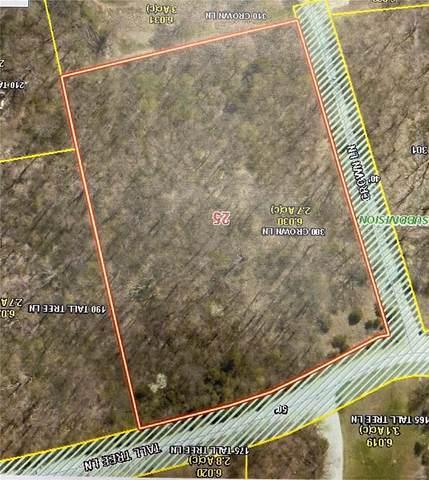 300 Crown Lane, Foley, MO 63347 (#21072777) :: Realty Executives, Fort Leonard Wood LLC