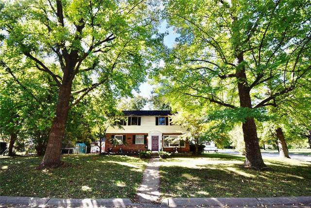 11052 Saint Kevin Lane, Saint Ann, MO 63074 (#21074022) :: Matt Smith Real Estate Group