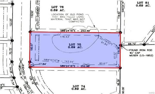 884 Bellerive Place, Washington, MO 63090 (#16053445) :: Matt Smith Real Estate Group