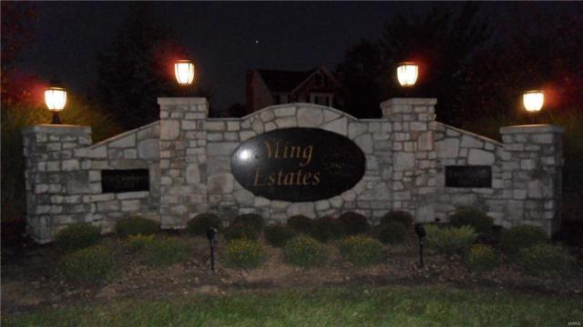 0 Lot 1 Ming Lake Drive, Washington, MO 63090 (#17025234) :: Holden Realty Group - RE/MAX Preferred