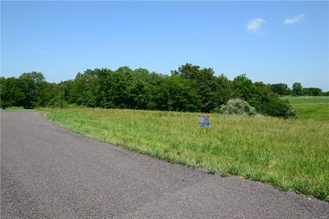 231 Rocking Horse Lane, Elsberry, MO 63343 (#17055575) :: Clarity Street Realty