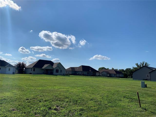 387 Canadian Drive, STAUNTON, IL 62088 (#17073286) :: Kelly Hager Group | TdD Premier Real Estate