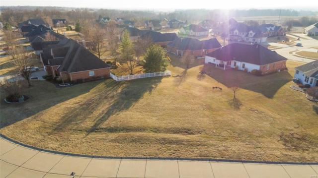 1707 Shadow Ridge, Columbia, IL 62236 (#18002491) :: Holden Realty Group - RE/MAX Preferred