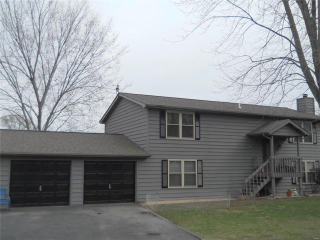 19608 Meg Lane, CARLYLE, IL 62231 (#18017344) :: Peter Lu Team