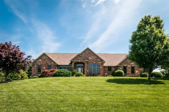 5229 Wild Oak Lane, Smithton, IL 62285 (#18017860) :: Clarity Street Realty
