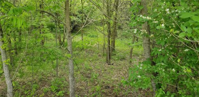 264 Deer Run Lane, Eureka, MO 63025 (#18031528) :: Walker Real Estate Team