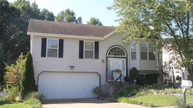 10 Moray Court, Valley Park, MO 63088 (#18060899) :: PalmerHouse Properties LLC