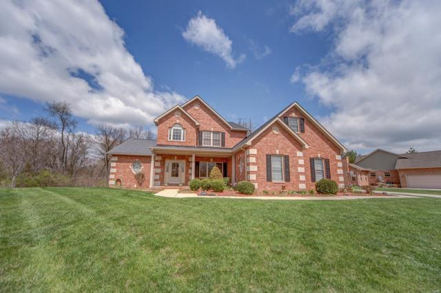 31 Wolf Creek Drive, Swansea, IL 62226 (#18064888) :: Holden Realty Group - RE/MAX Preferred