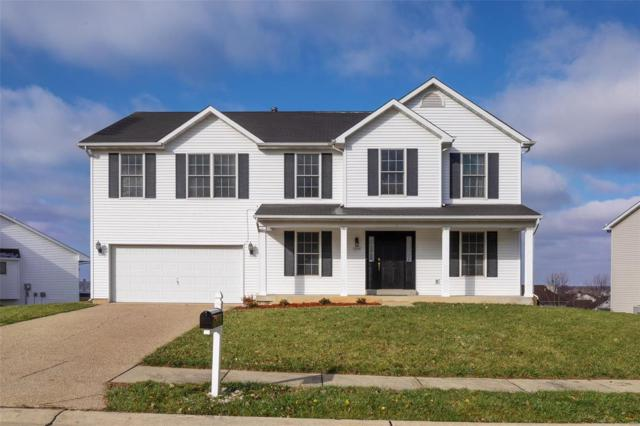3560 Sky Hawk Drive, Shiloh, IL 62221 (#18087424) :: Kelly Hager Group | TdD Premier Real Estate