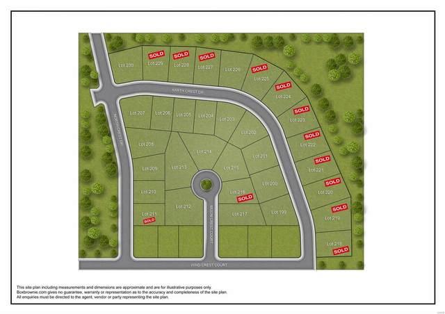 205 Earth Crest Drive, Washington, MO 63090 (#19018870) :: Parson Realty Group