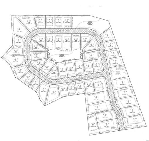 45 Lot 45 Winter Wheat Trail, Pacific, MO 63069 (#19024639) :: Walker Real Estate Team