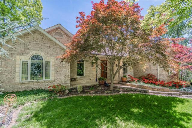 2 Locust Hills Woods, Lebanon, IL 62254 (#19032628) :: The Becky O'Neill Power Home Selling Team