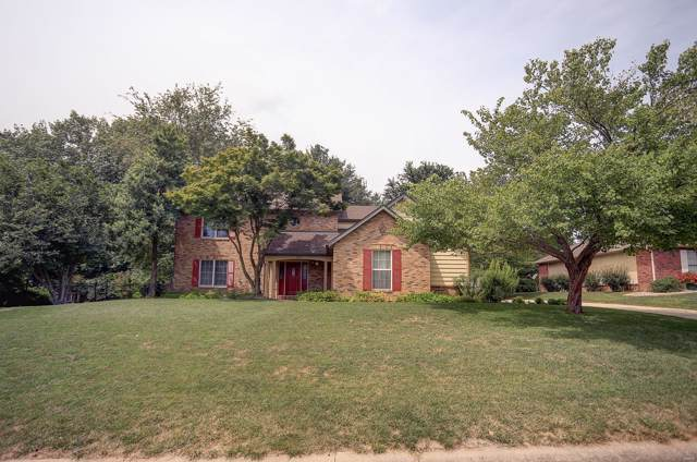 205 Wild Cherry Lane, Swansea, IL 62226 (#19054896) :: Holden Realty Group - RE/MAX Preferred