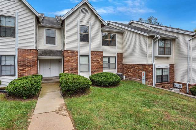6462 White Cap D, Florissant, MO 63033 (#19063817) :: RE/MAX Professional Realty