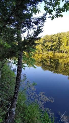 69 N Lake Sherwood Drive, Marthasville, MO 63357 (#20001600) :: Kelly Hager Group   TdD Premier Real Estate