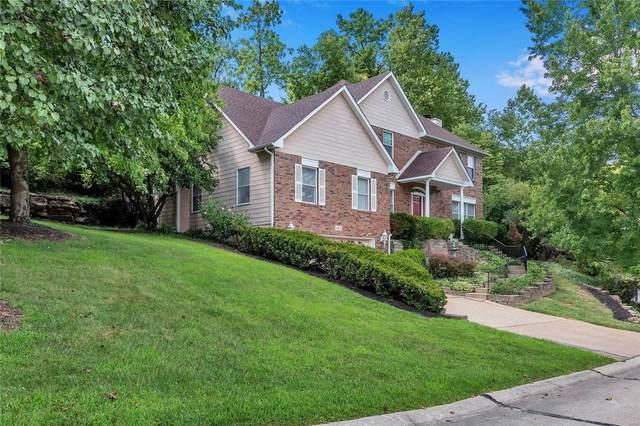 13607 Mason Meadows Court, St Louis, MO 63131 (#20060389) :: Peter Lu Team