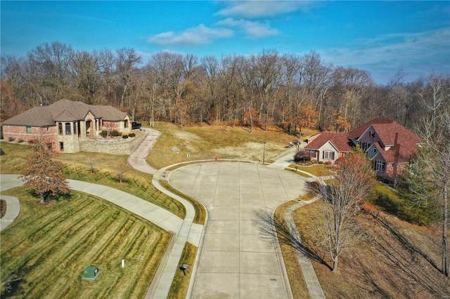 4012 Forest View Drive, Edwardsville, IL 62025 (#20067655) :: Fusion Realty, LLC