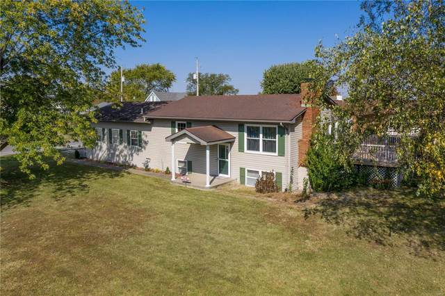 7217 State Route 15, Saint Libory, IL 62282 (#20073170) :: Walker Real Estate Team