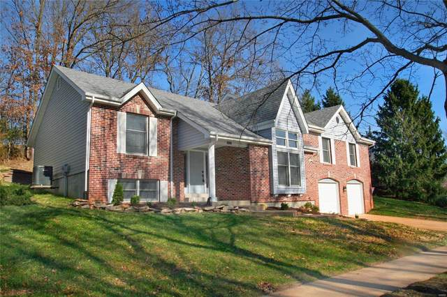14315 White Birch Valley Lane, Chesterfield, MO 63017 (#20083650) :: Parson Realty Group