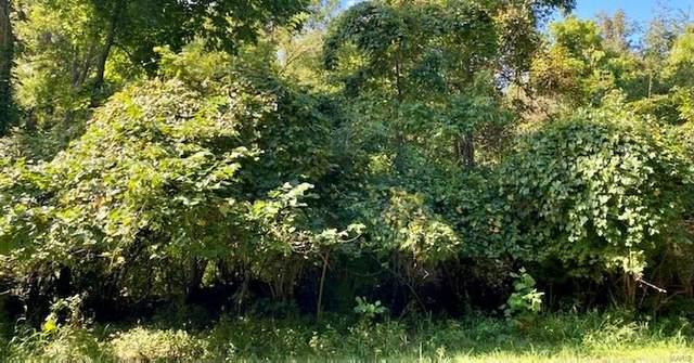 1835 Kehrs Mill Road, Wildwood, MO 63005 (#20087814) :: Krista Hartmann Home Team