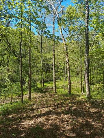 0 Lot 7 Starview Acres, Troy, MO 63379 (#21022172) :: Parson Realty Group