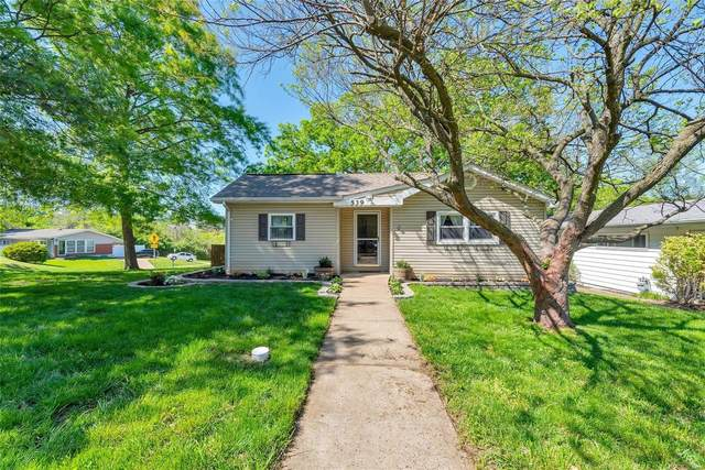 539 Joshua, St Louis, MO 63126 (#21029611) :: Terry Gannon | Re/Max Results