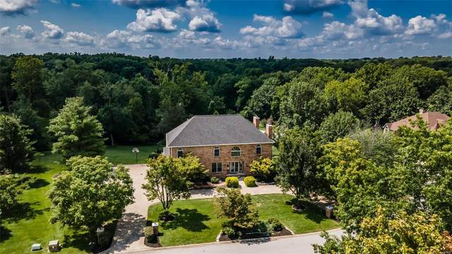 5331 Richland Woods Drive, Alton, IL 62002 (#21048307) :: The Becky O'Neill Power Home Selling Team