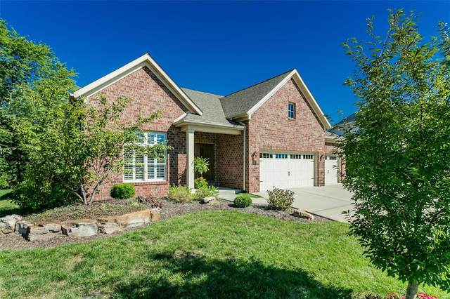 221 Fountain Dr., Glen Carbon, IL 62034 (#21064507) :: Parson Realty Group