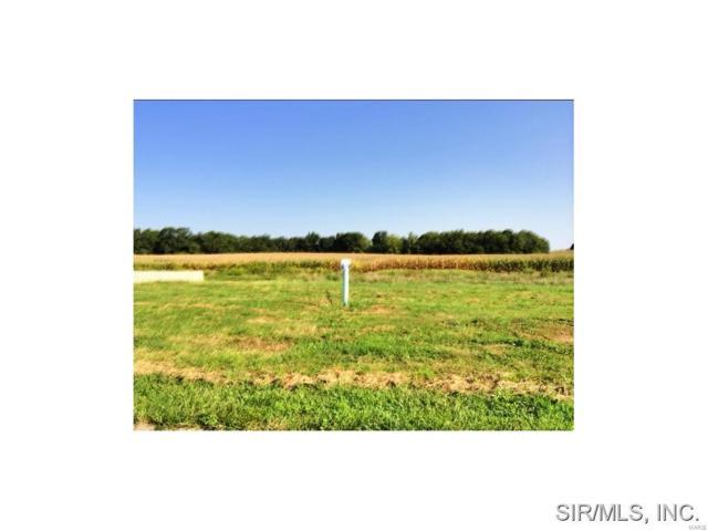 Cliff View Drive, Valmeyer, IL 62295 (#4312101) :: Sue Martin Team