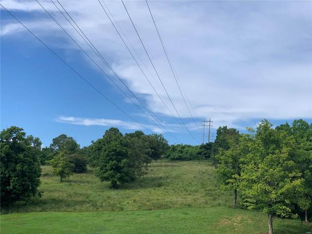 0 Hillside Dr/Valley Rd/Hwy E Drive, Potosi, MO 63664 (#16005784) :: The Becky O'Neill Power Home Selling Team