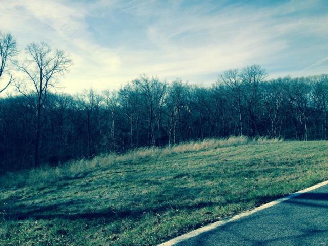 17394 Orrville Road, Wildwood, MO 63005 (#16050296) :: PalmerHouse Properties LLC