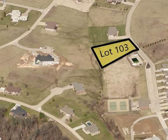 691 Silverado Trail, Cape Girardeau, MO 63701 (#17081442) :: Kelly Hager Group | TdD Premier Real Estate