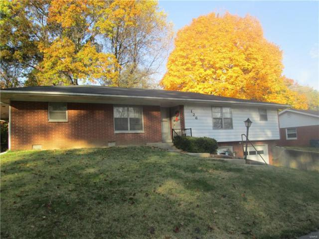 126 Union Hill Road, Fairview Heights, IL 62208 (#17086832) :: Fusion Realty, LLC
