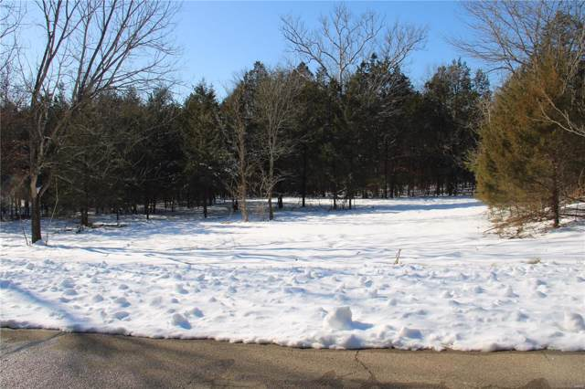 1665 Cedar Park, Hillsboro, MO 63050 (#19049999) :: Sue Martin Team