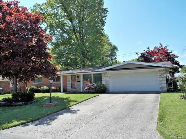 49 Bedford Drive, Belleville, IL 62226 (#20007555) :: Fusion Realty, LLC