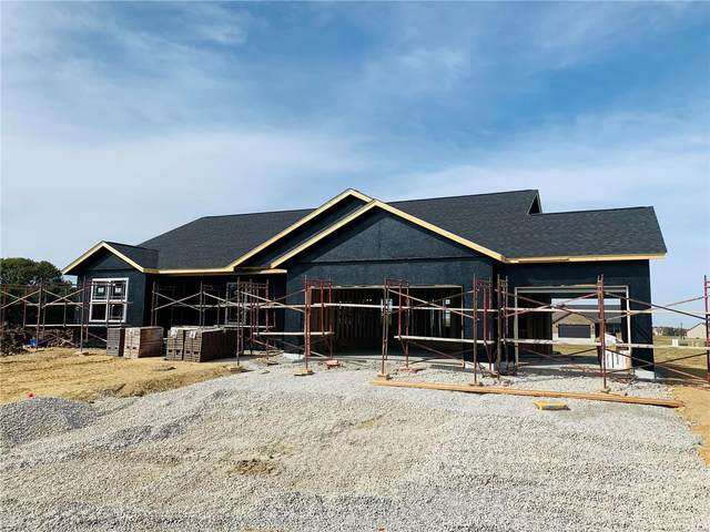 3767 Osprey Court, Shiloh, IL 62221 (#20068306) :: PalmerHouse Properties LLC