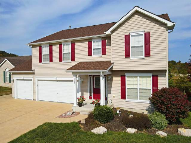 1023 William And Mary Court, Barnhart, MO 63012 (#20074810) :: Peter Lu Team