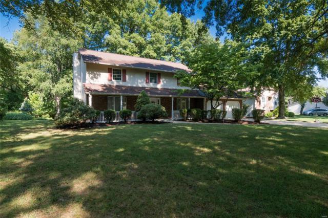 6 Ginger Ridge Lane, Glen Carbon, IL 62034 (#18059473) :: PalmerHouse Properties LLC