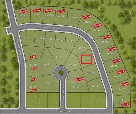 201 Earth Crest Drive, Washington, MO 63090 (#19018863) :: Parson Realty Group