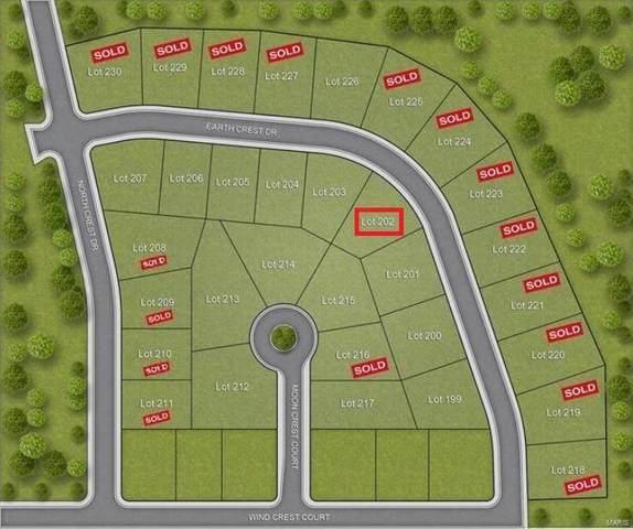 202 Earth Crest Drive, Washington, MO 63090 (#19018866) :: Parson Realty Group