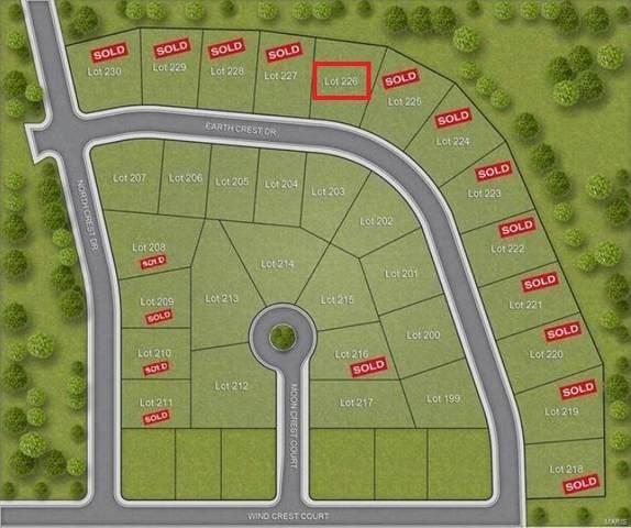 226 Earth Crest Drive, Washington, MO 63090 (#19018892) :: Parson Realty Group