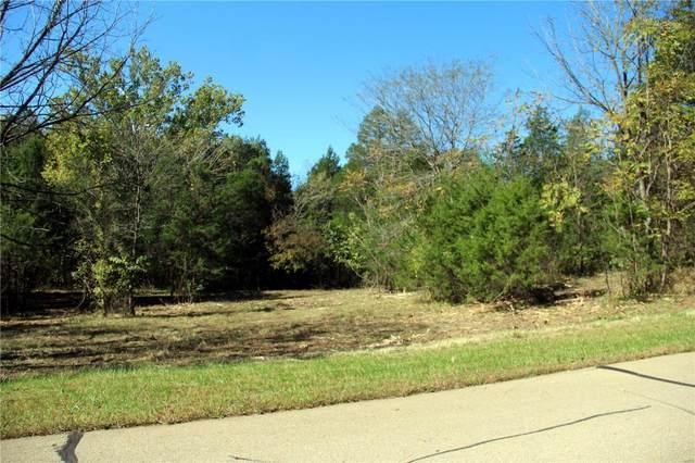 1665 Cedar Park, Hillsboro, MO 63050 (#19049999) :: Kelly Hager Group | TdD Premier Real Estate